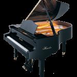 Haessler Model 175 Grand Piano Florida