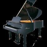 Haessler Model 210 Grand Piano Florida