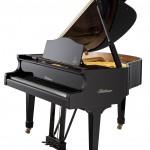 Bluthner Model 11 Grand Piano Florida