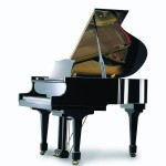 Irmler Europe Model 160 Grand Piano Florida