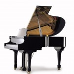 Irmler Europe Model 175 Grand Piano Florida