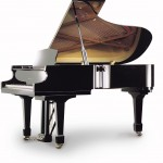 Irmler Model Europe 210 Grand Piano Florida