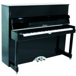 Irmler Art Design Upright Piano Gina