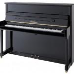Bluthner Upright Piano Model C