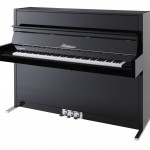 Bluthner Upright Piano Model D